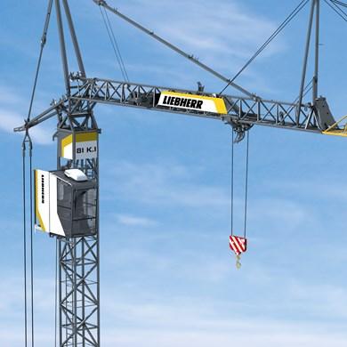 liebherr-fast-erecting-crane-81k-1-13.jpg